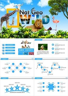 蓝色唯美清新保护野生动物动态PPT模板