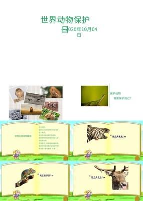 简洁世界动物保护日爱护环境PPT模板