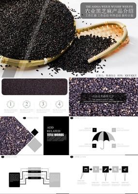 黑白简约杂志风农产品黑芝麻产品宣传通用PPT模板