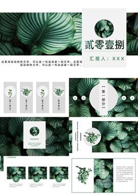 绿叶植物森系文艺商业计划书PPT模板